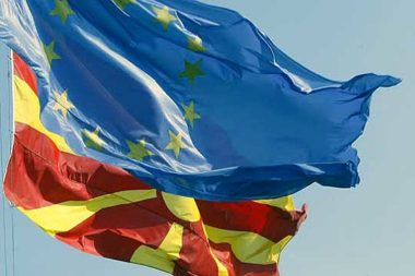 2014 Progress report on the Former Yugoslav Republic of Macedonia (debate) (2)